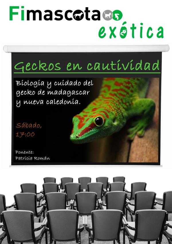 Conferencias2.jpg