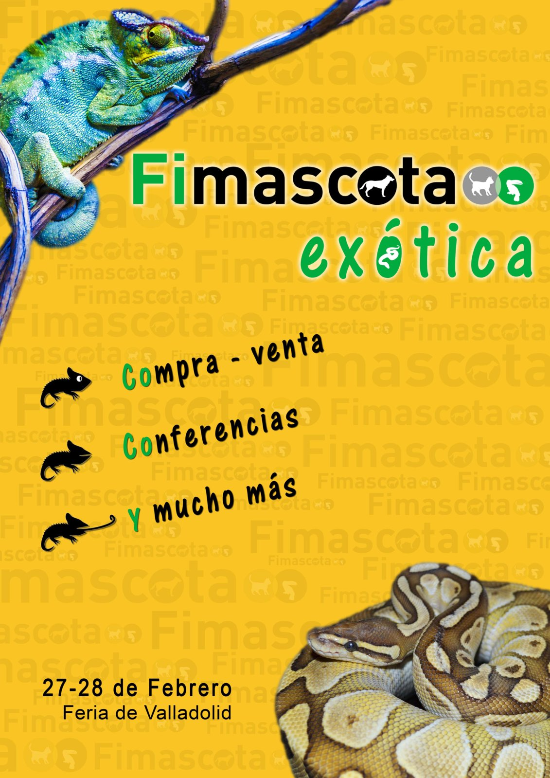 Fimascota Exótica.jpg