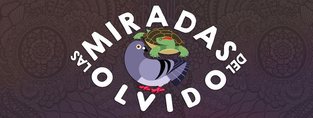 Las Miradas Del Olvido.jpg