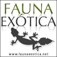 www.faunaexotica.net